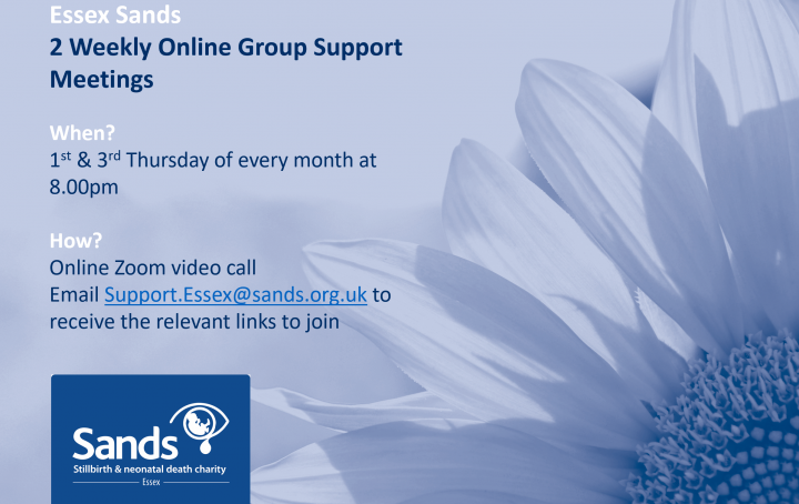 Online Support Meetings